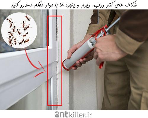 پیشگیری از تهاجم مورچه با مسدود کردن درز و شکاف های خانه