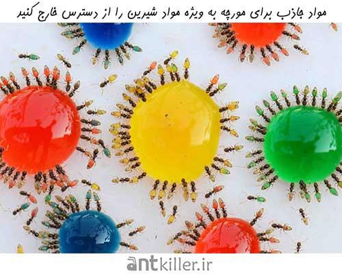 پیشگیری از تهاجم مورچه با ممانعت از دسترسی مورچه به مواد غذایی