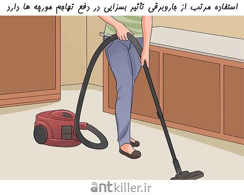 استفاده از جاروبرقی برای دفع تهاجم مورچه و جلوگیری از بازگشت مورچه