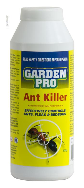 مورچه | قوی ترین سم ریشه کنی مورچه
